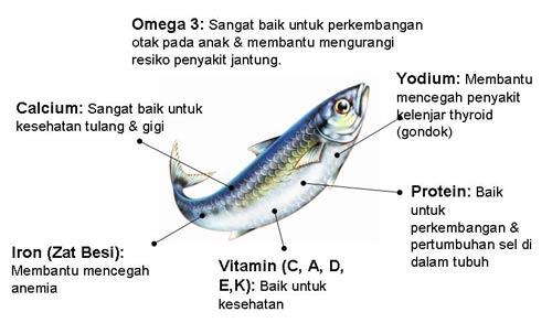 ikan sarden, sardines in tomato sauce