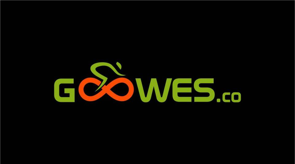 goowes.co